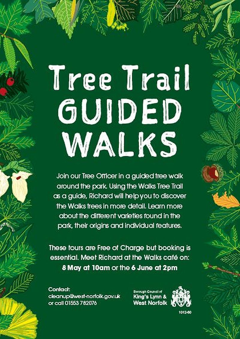 Tree Trail Guided Walks